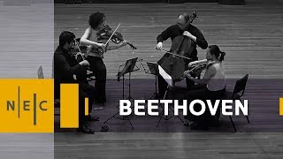 Ludwig van Beethoven: String Quartet No. 16 in F Major, op. 135 – Verona Quartet
