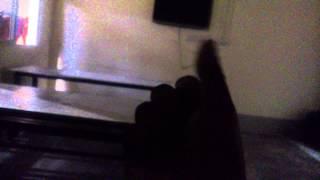 Video Arif+Tamanna sex scandal download MP3, 3GP, MP4, WEBM, AVI, FLV November 2018