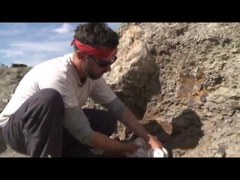 Wendiceratops: Fieldwork with David Evans