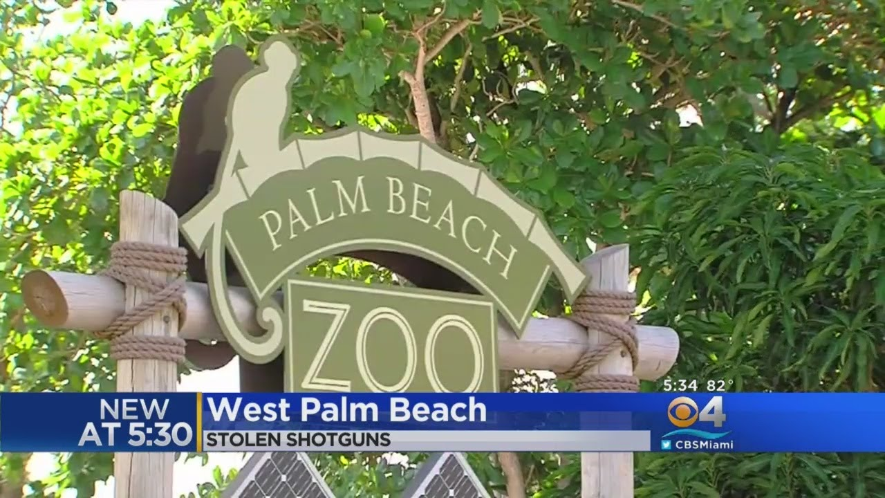 Search Is On For Pair Of Shotguns Stolen From Palm Beach Zoo - YouTube
