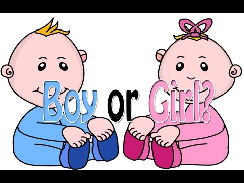 how to tell if its a boy or girl