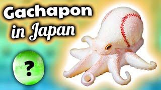 Gachapon in Japan: OCTOPUS + BASEBALL