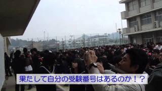 20110315山口高校合格発表
