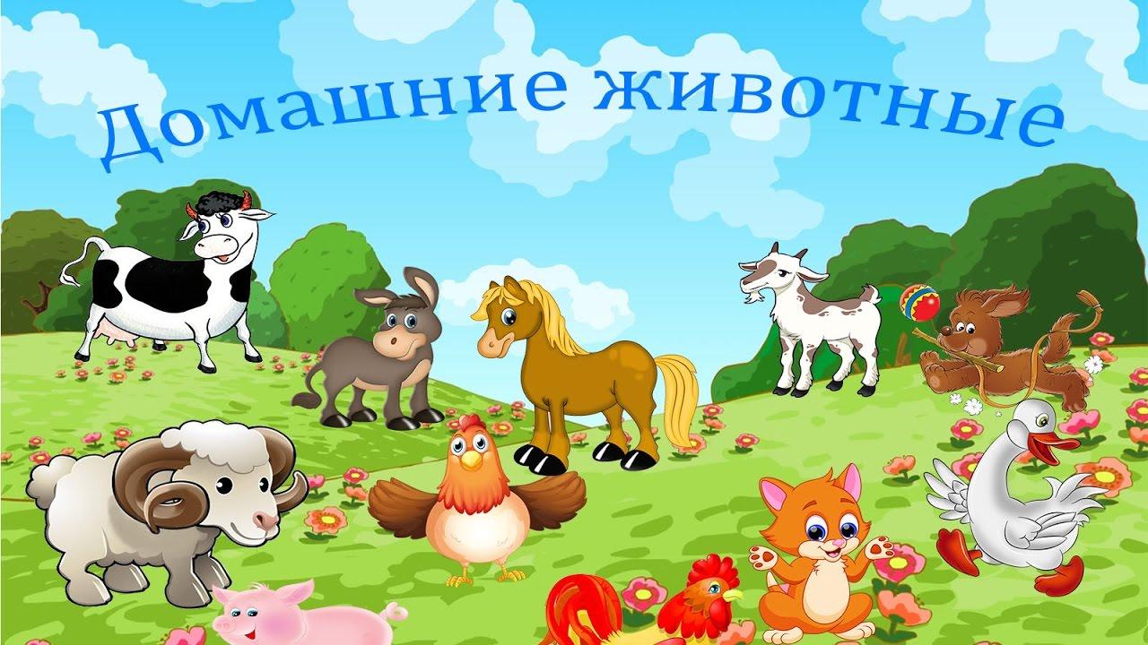 Животные картинки для малышей с голосами