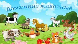 Домашние животные для детей, мультик про голоса животных. Кто как говорит?