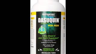 Vitamins For Dogs I Dasuquin With Msm For Large Dogs