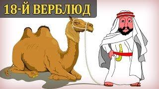 18 Верблюдов. Философия. Математика. Саморазвитие