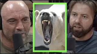 Cute but Ruthless Animals w/Forrest Galante | Joe Rogan
