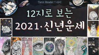 [타로:운세] 12지×12동물로 보는 2021년 신년운세