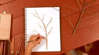 How to Draw Tree Branches in Colored Pencil : How to Draw with Colored Pencils