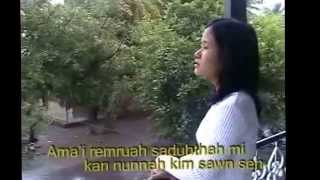 Download lagu Hnangam Daih Nak    Sak ‣ Mai Lal Rin Pui ( Puite )