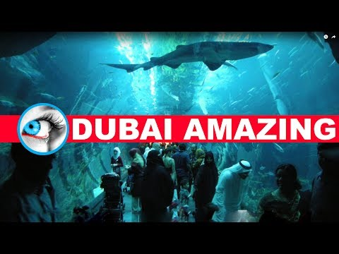 DUBAI The Most Amazing Experience 2017 Must See & Do Travel Guide