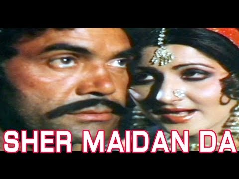 SHER MAIDAN DA (1981) - SULTAN RAHI, ANJUMAN, MUSTAFA QURESHI - OFFICIAL PAKISTANI MOVIE