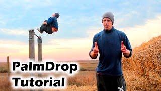 Как научиться PalmDrop за одну тренировку (Palm Drop Tutorial)