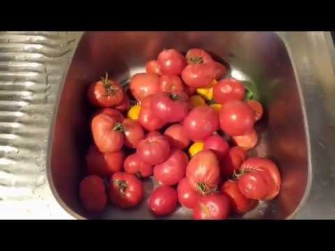 Суп из консервы в томате в