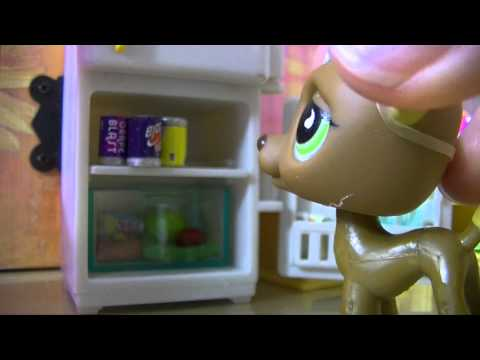 ❀Littlest Pet Shop: Behind the Scenes (Café)