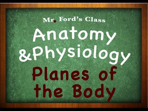 Introduction To Anatomy Physiology: Planes of the Body (01:08)