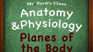 Introduction To Anatomy Physiology : Planes of the Body