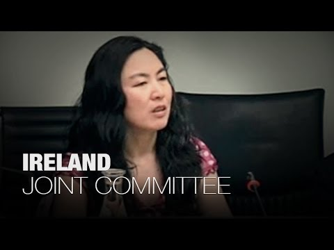 Ireland - Joint Committee on Foreign Affairs - Unethical Organ Harvesting in China - Part 1/3