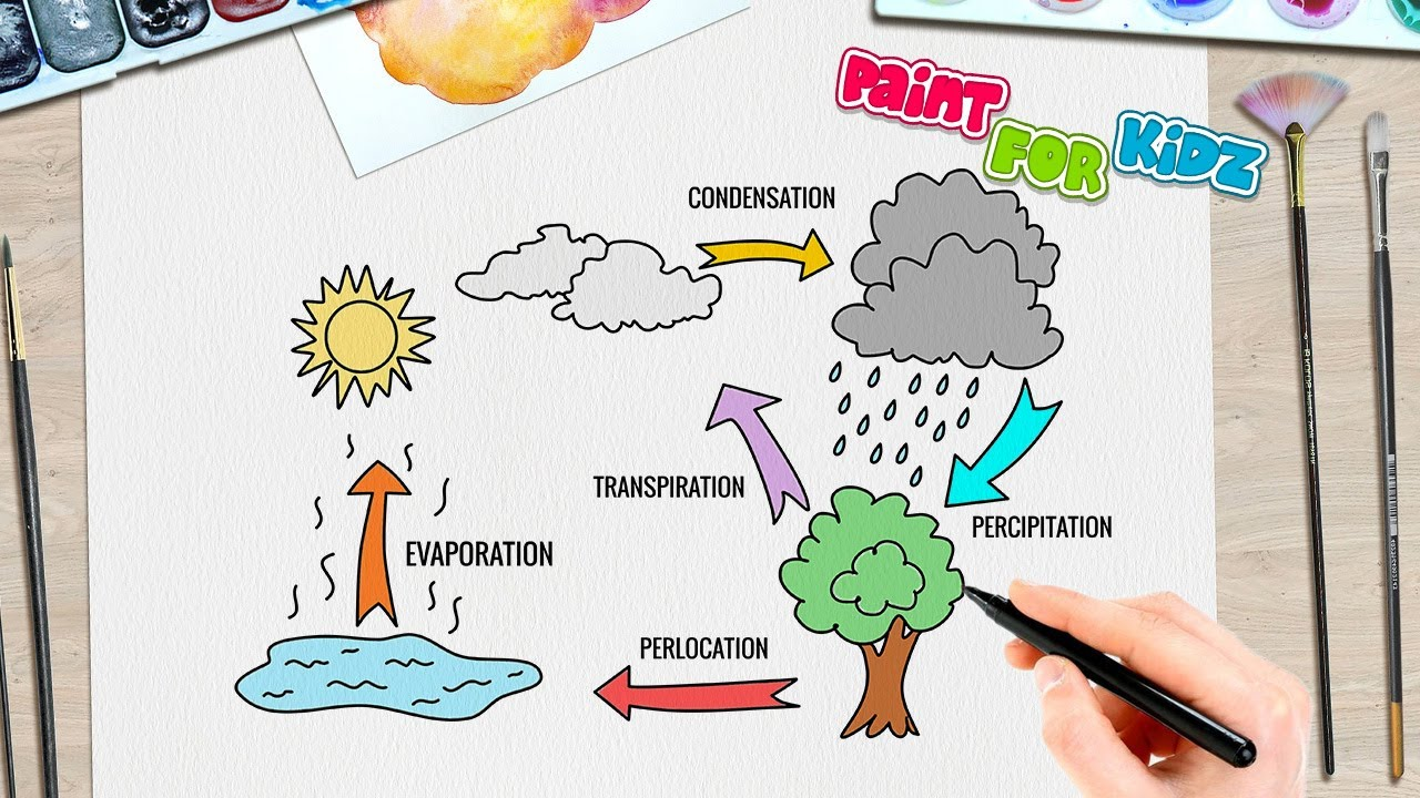 Water Cycle Drawing Easy Step By Step Paint For Kidz Youtube