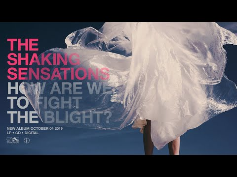 The Shaking Sensations - How Are We to Fight the Blight [Exclusive Premiere] Mp3
