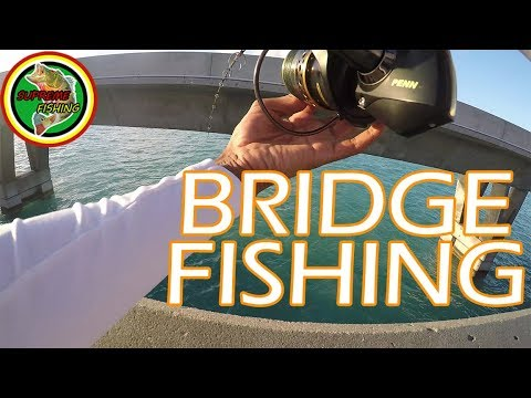 Bridge Fishing In The Florida Keys (Surprise Catch On First Cast!)