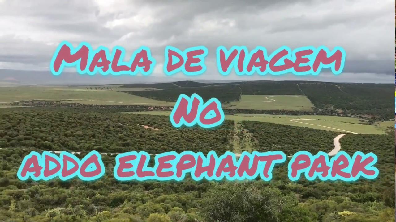 Download ADDO Elephant Park com o Blog Mala de Viagem