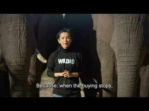 Say No To Ivory and Rhino Horn PSA: War, starring Li Bingbing