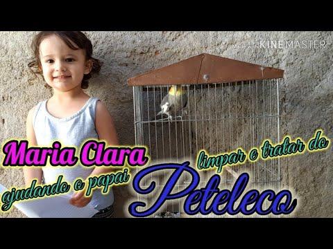 A ESPADA COM OS PODERES do BROLY DRAGON BALL SUPER no MINECRAFT !! from YouTube · Duration:  10 minutes 16 seconds