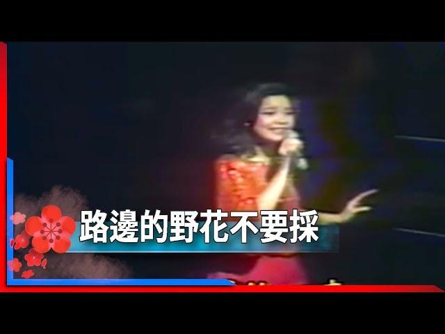 1981君在前哨-鄧麗君-路邊的野花不要採 Teresa Teng テレサ・テン