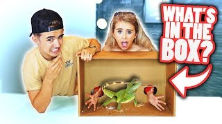 What's In The BOX Challenge with my SISTER! (ANIMALS)