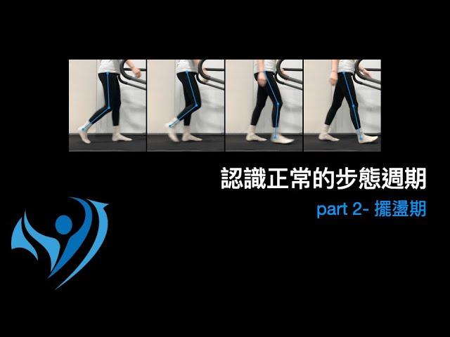 脊椎側彎行走步態訓練1-2正常步態週期-擺盪期