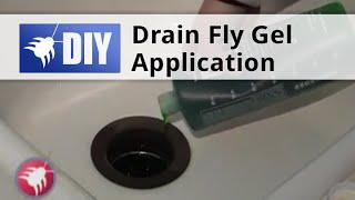 Drain Fly Gel Application