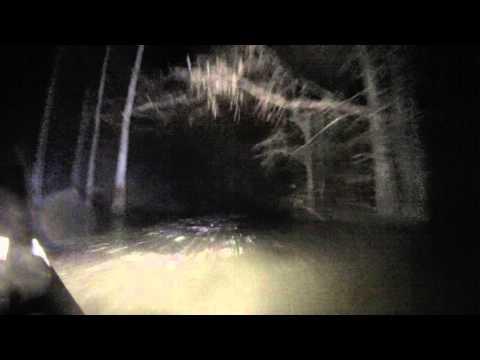 Arkansas Green Timber Boat Ride
