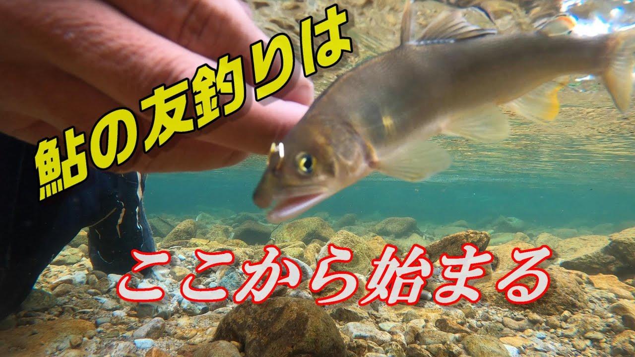 【鮎釣り初心者必見】オトリ鮎の付け方!鮎の友釣りはここから始まる