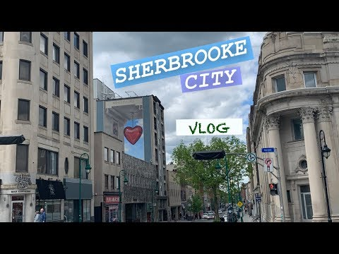 [Vlog 🇨🇦] - Muralis De Sherbrooke En Une Aprem