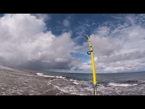 Popping on Roi-Namur Marshal Islands pt1