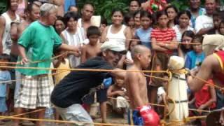 Filipino Boxers (future pacman)