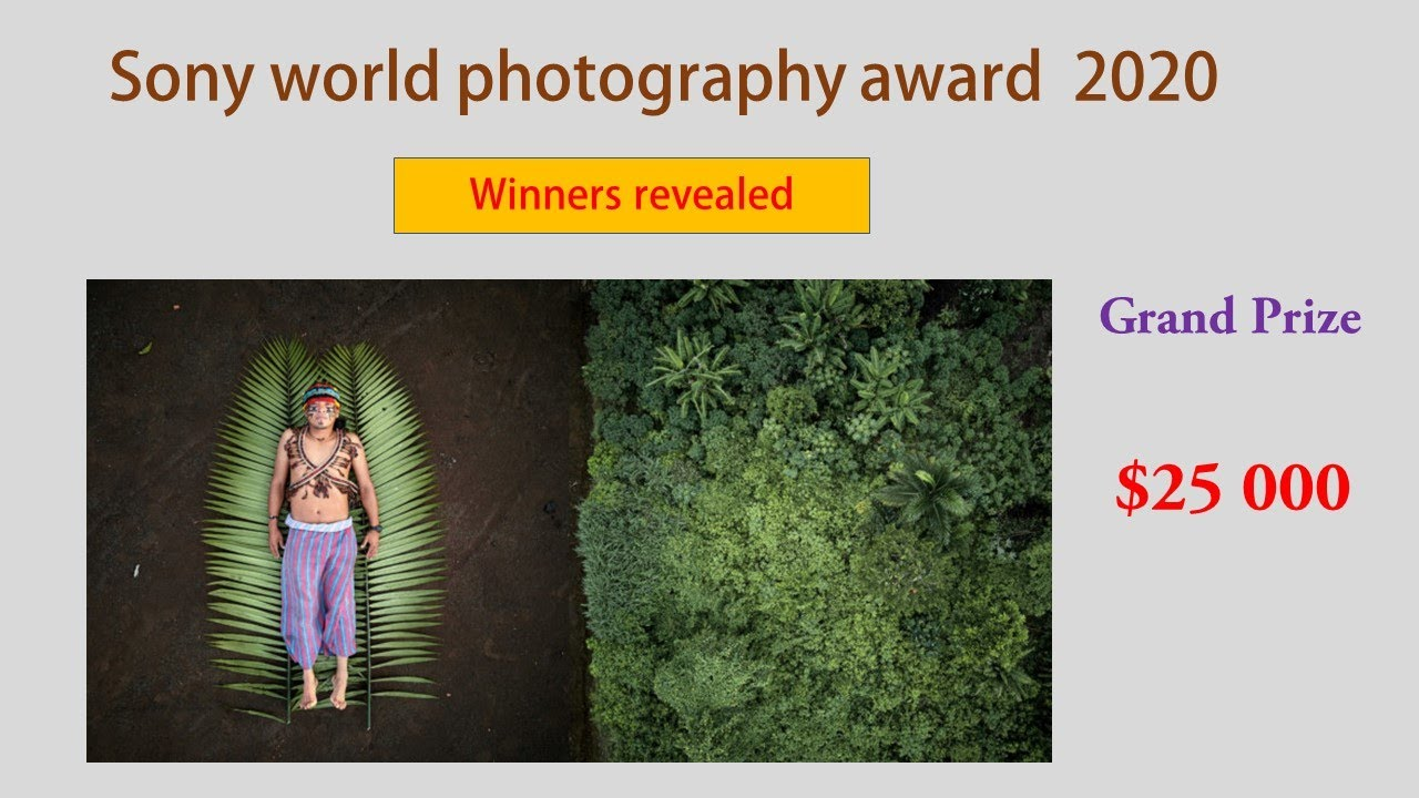 2020 Sony World Photography Awards [Winners revealed]