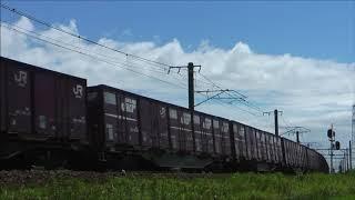 DD51の貨物列車 その2