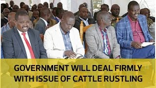 Video Government will deal firmly with the issue of cattle rustling in Elgeyo Marakwet - DP Ruto download MP3, 3GP, MP4, WEBM, AVI, FLV September 2018