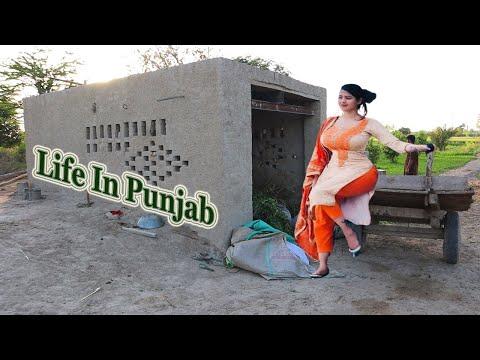 Normal Lifestyle Gaon Mein | Sadha Or Khubsurat Desistyle Rooms | Village Life [55]