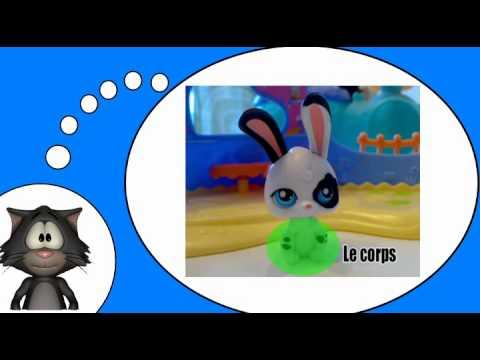 Frans leren met mij = De huisdieren # Het konijn