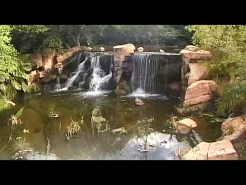 Sun City Vacation Travel Video Guide