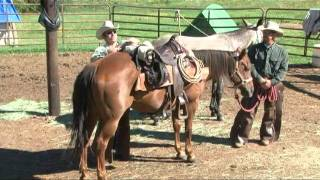 Horse/Mule Packing with Saddle Panniers