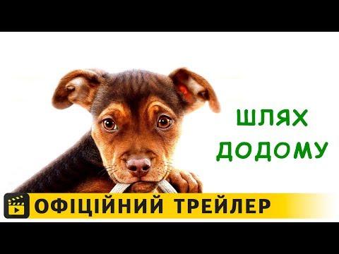 трейлер Шлях додому (2019) українською