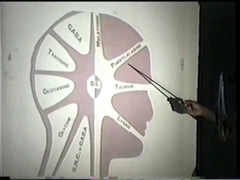 Holistic Health, & Healing 101   Dr. Llaila Afrika