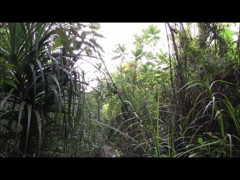 Perhentian Islands - Peninsular Malaysia