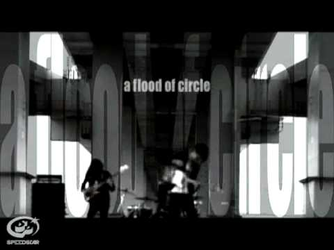 a flood of circle / Human License  【Music Video】