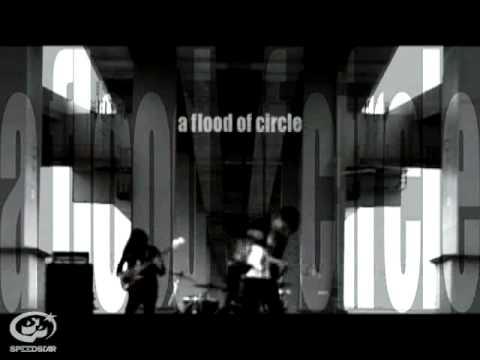 a flood of circle / Human License  【Music Video】